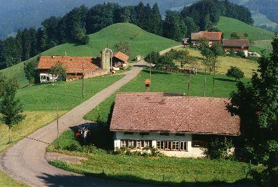 Dunkelwies und Oberer Wolfensberg