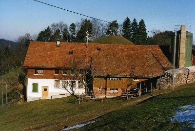 Oberer Wolfensberg