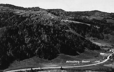 Wolfensberg