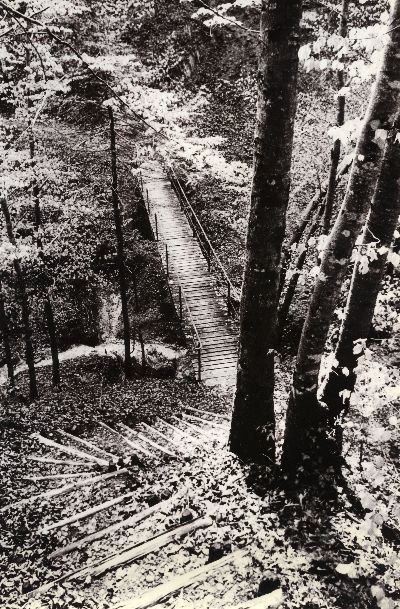 Bauma: Lochbach mit Guyer-Zeller Weg