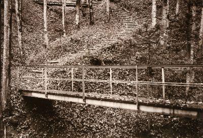 Guyer - Zeller- Weg im Lochbach: Bauma