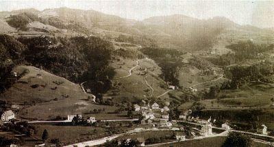 Bauma: Holderbaum