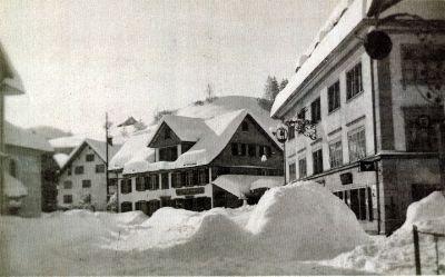 Bauma im Schnee