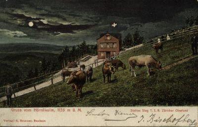 Gruss vom Hörnlikulm 1135m ü. M.:  Station Steg T.T.B. Zürcher Oberland