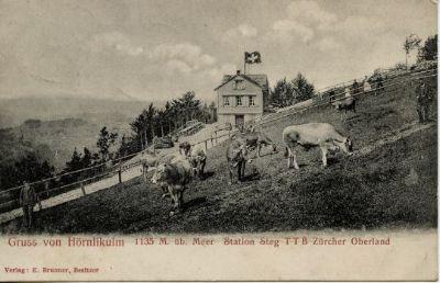 Gruss von Hörnli, 1135m ü. M.:  Station Steg T.T.B. Zürcher Oberland