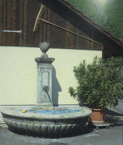 Brunnen</x> vor <x>Haus Sollberger